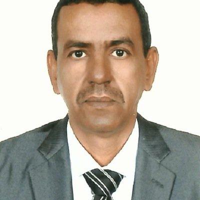 محمد عبد الرحمن ولد الزوين: مدير صحيفة السفير
